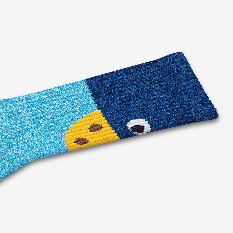 Women's Sesame Street Cookie Monster Colorblock Socks