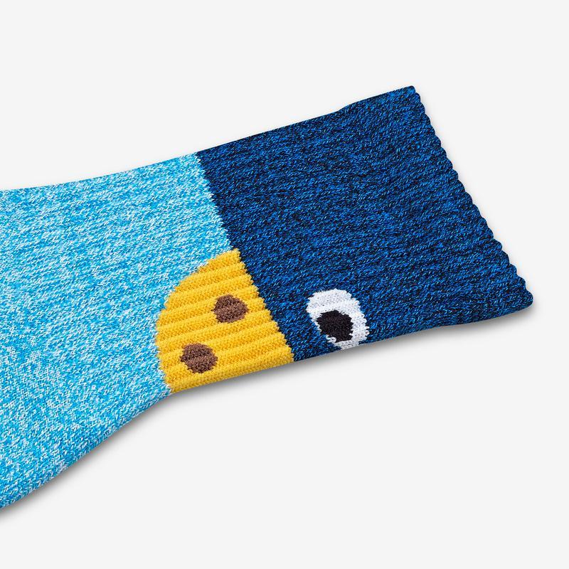 Youth Sesame Street Cookie Monster Colorblock Socks