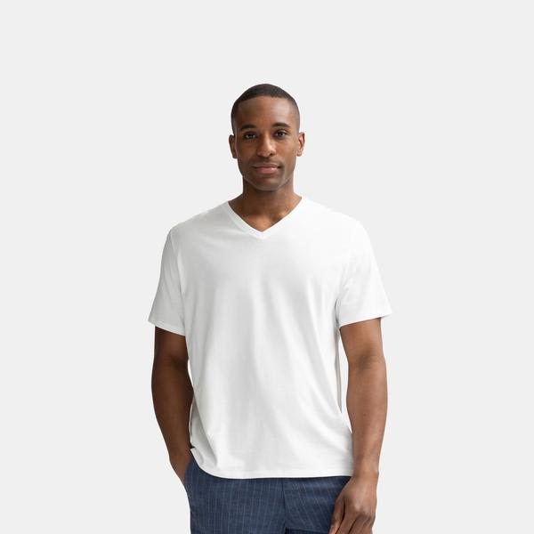 239dc3fb43c3 Men s Pima Cotton V-Neck T-Shirt – Bombas